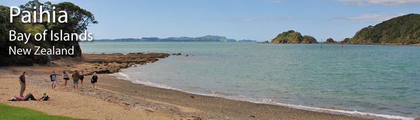 Scenic Walks you can take from Paihia